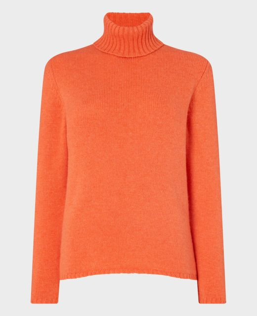 Really Wild Cashmere Roll Neck Main Image