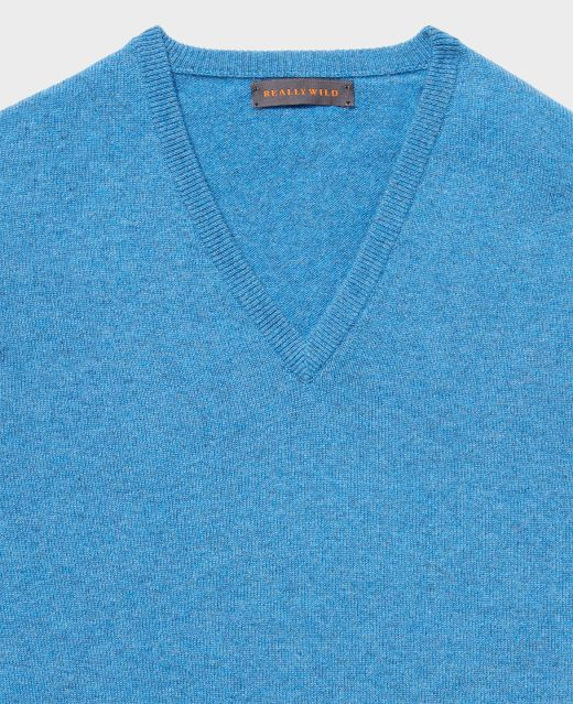Really Wild Cashmere V-Neck Different Angle 1