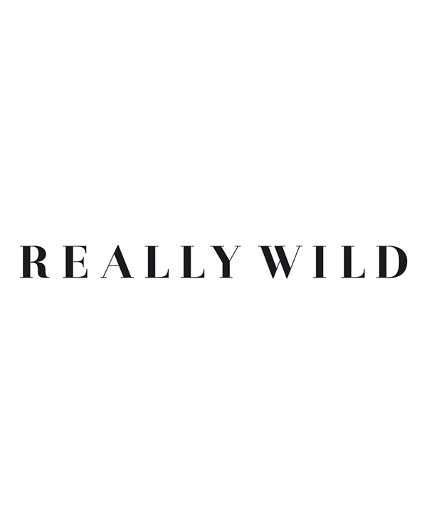 Really Wild Plain Camisole Main Image